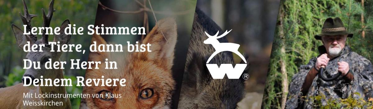 Weisskirchen schnepfenlocker Locker Wild Locker